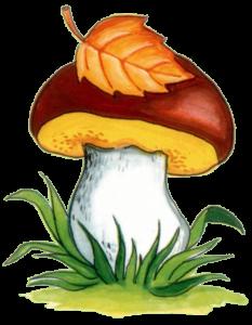 для детей картинки грибы